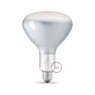 Light bulb filament Led R125 7.5W E27 Shiny