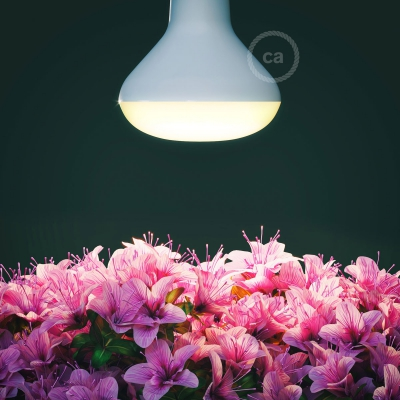 LED Lamp for Plants Flowering 12W E27